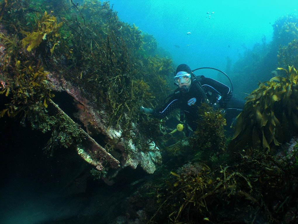 Underwater Qualities
